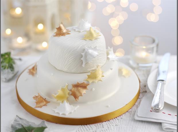 The Range Christmas Cake Decorations